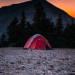 red-and-gray-done-tent-near-tree